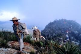 Mexique • Le chemin sacré des peyoteros