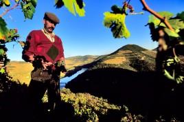 Portugal • A la santé du Douro