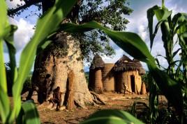Bénin • Vaudou : le réveil des fétiches