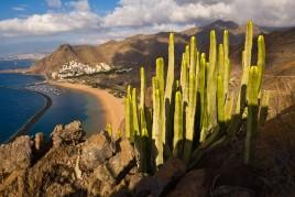 Espagne • Ténérife : à l'ombre du Volcan