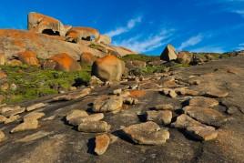 Australie • Kangourou Island : L'Eden australien